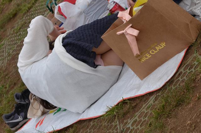 芝生でお花見しているOLのパンストパンチラ画像11枚目