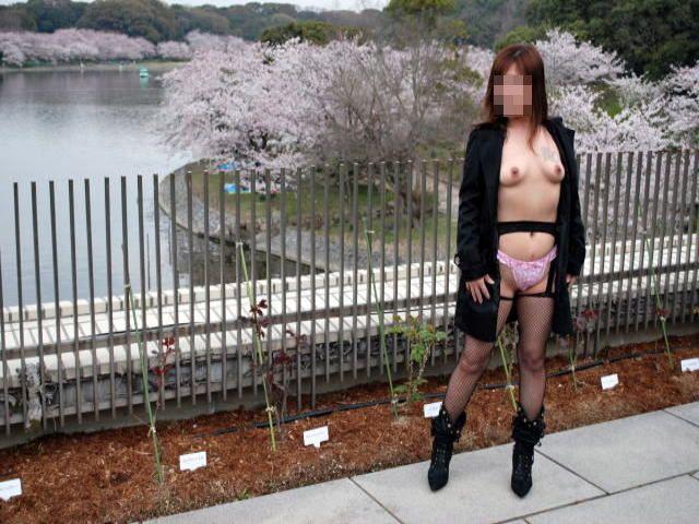 花見でパンスト全裸露出をする美人OLの調教画像10枚目