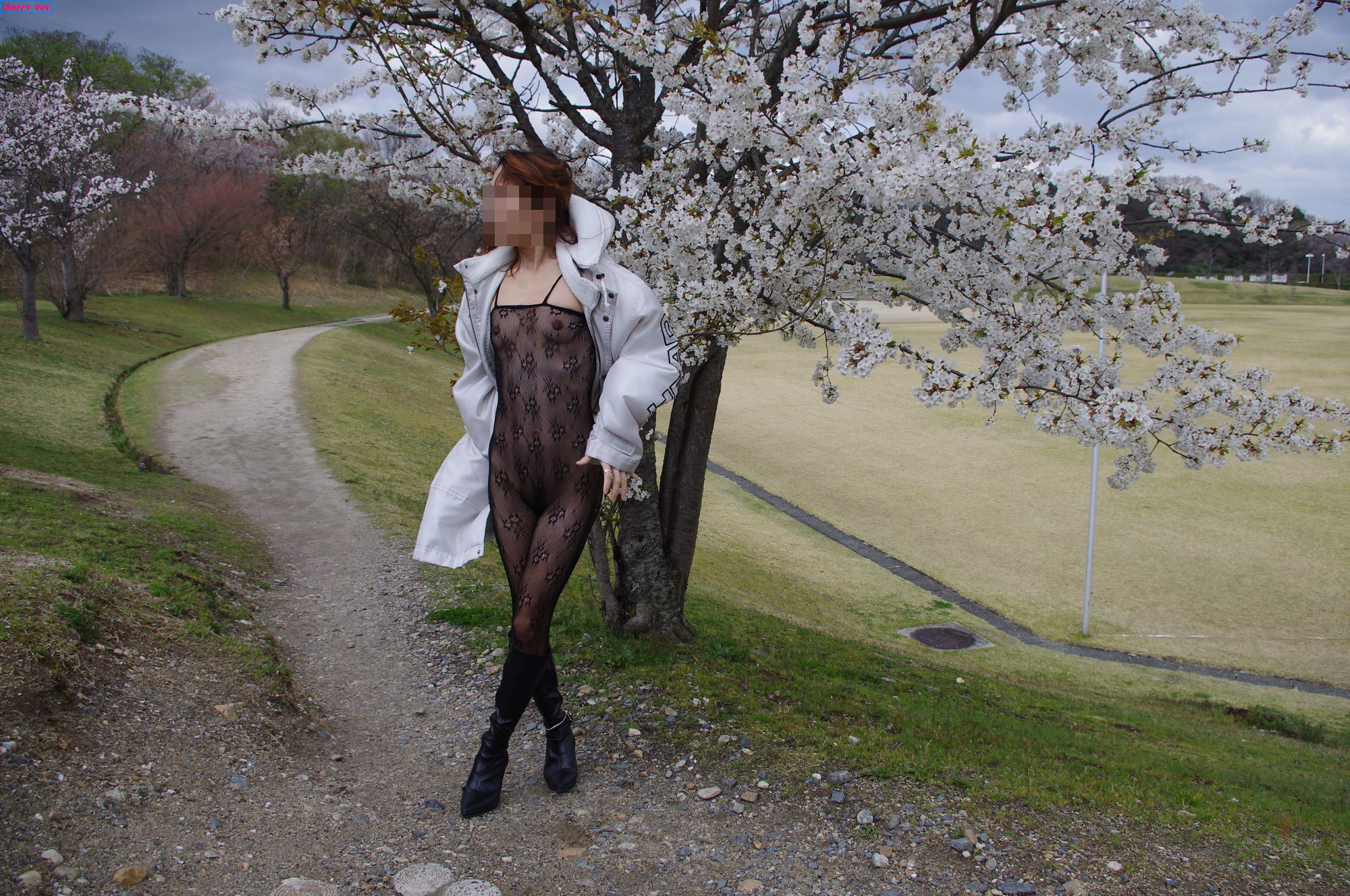 花見でパンスト全裸露出をする美人OLの調教画像11枚目